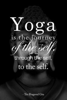 20150422-yoga_7
